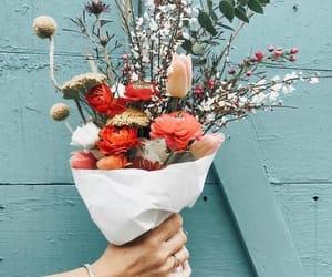 boquet, colors, and florist image