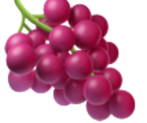 grape, sticker, and png image