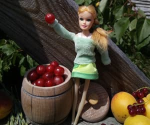 apple, farm, and doll image