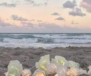 beach, minimalist, and flower image