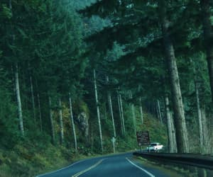 aesthetic, road, and trees image