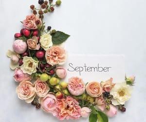 flores, inspiracion, and positivo image