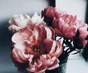 tumblr inspiration, bouquets luxury glamour, and nature aesthetic image