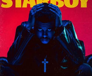 album cover, the weeknd, and starboy image