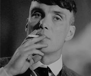 gif and tommy shelby image