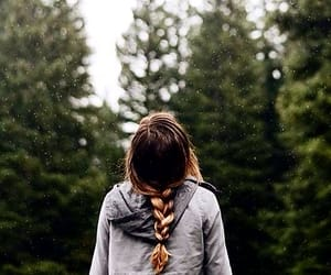 forest, photography, and tumblr image