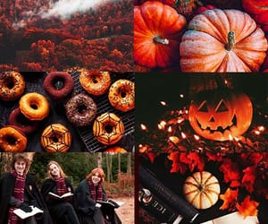 fall, Halloween, and autumn image