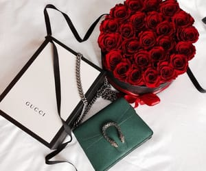 fashion, gucci, and rose image