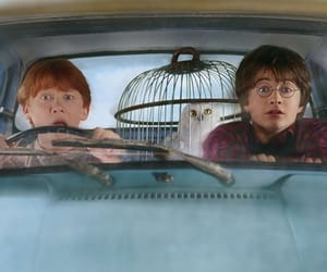 chamber of secrets, ron weasley, and harry potter image