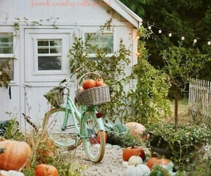 autumn, bicycle, and pumpkins image