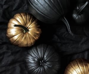 black, pumpkin, and gold image