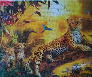 leopard, leopardo, and puzzle image