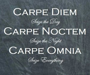 carpe diem, choice, and night image