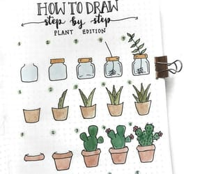 drawing, plants, and cactus image