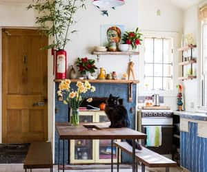 kitchen, cat, and home image