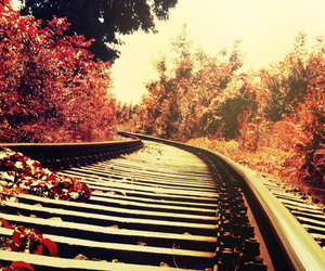 autumn, red, and train image
