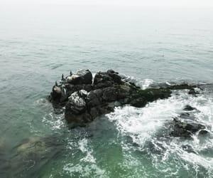 ocean and turquesa image