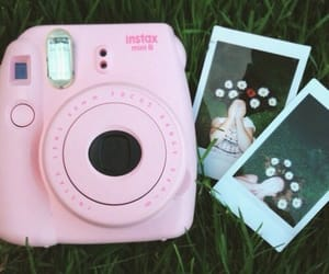 polaroid, pink, and tumblr image