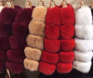 fur, red, and white image