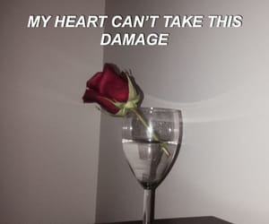 quotes, damage, and flowers image