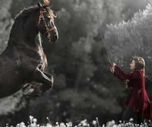 horse, princess, and royalty image