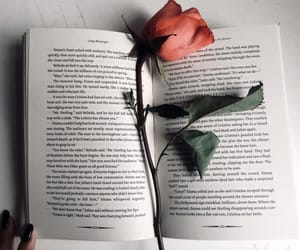 book, flower, and rose image