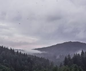 clouds, cloudy, and foggy image