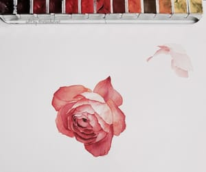 art drawings, watercolor paint, and rose gold pink image