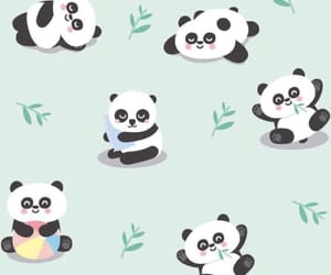 panda, tumblr, and wallpaper image