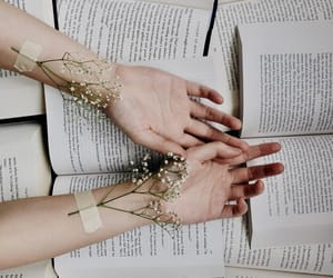 aesthetic, beautiful, and books image