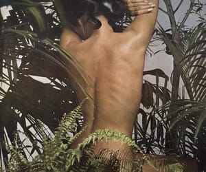 1970s, indie, and plants image