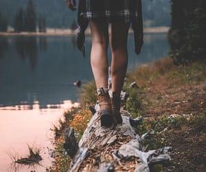 autumn, fall, and hiking image