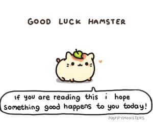 gif, good luck, and hamster image