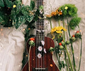flowers, indie, and music image
