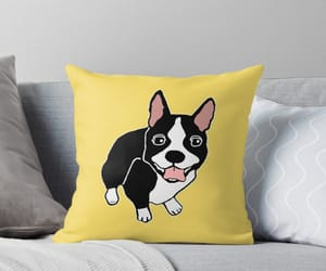 boston terrier, pillow, and yellow image