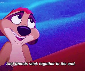 disney, Timon and Pumbaa, and the lion king image