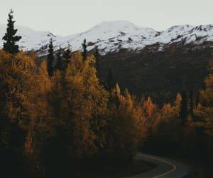 autumn, road, and beautiful image