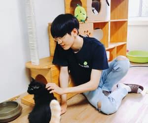 cat, Seventeen, and wonwoo image