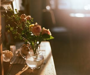 Sunny and vase with roses image