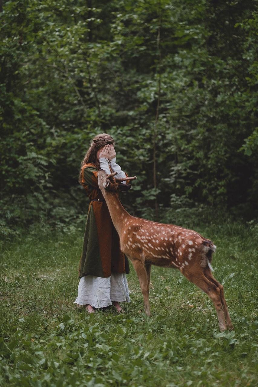 girl, deer, and animal image