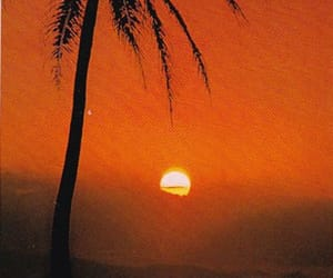 70s, paradise, and sun image