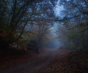 autumn, beauty, and dark image