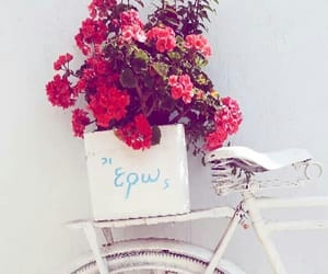 flowers, Greece, and style image