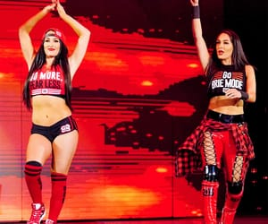 wwe, the bella twins, and nikki bella image