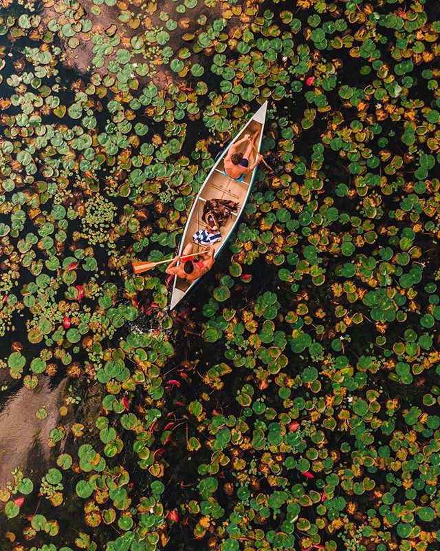 green, lake, and photography image