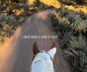 caballo, etiquetas, and horse image