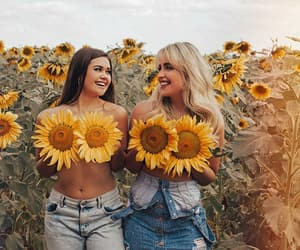 blond, sunflower, and field image