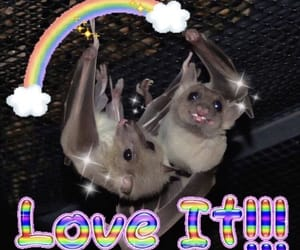 goth, aesthetic, and bats image