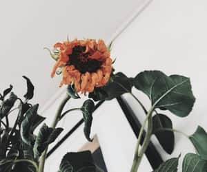 article, positivity, and self care image