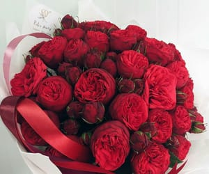 bouquet, roses, and розы image